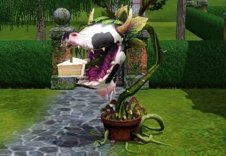 Как в симс 3 сделать человека растение